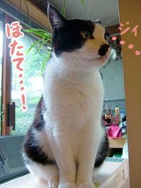 石川正太郎1